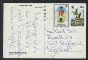 ST LUCIA  (P2209B) PPC WITH 20C SOLDIER+35C WWF BIRD TO SWITZERLAND