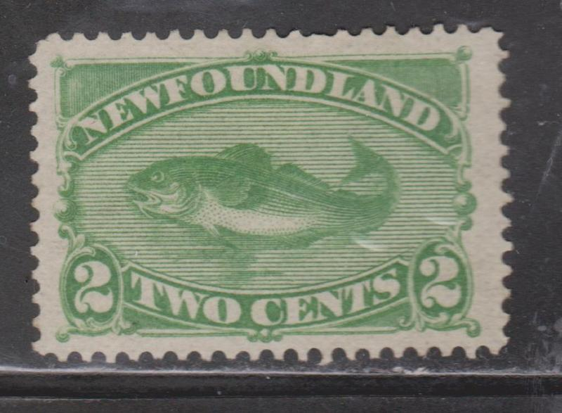 NEWFOUNDLAND Scott # 46 - Mint NO GUM  Early Codfish Issue