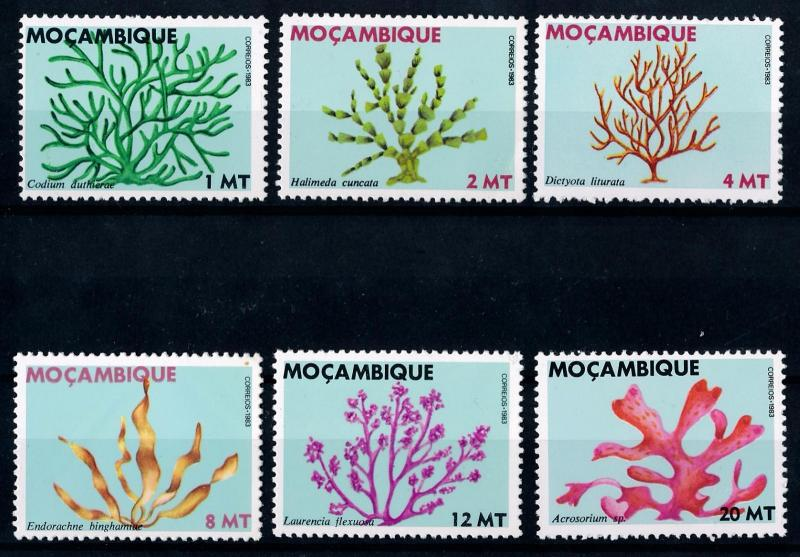 [65909] Mozambique 1983 Flora Plants Seaweed  MNH