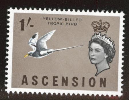 Ascension Island Scott  83 MH*  Yellow-Billed Bird 1963