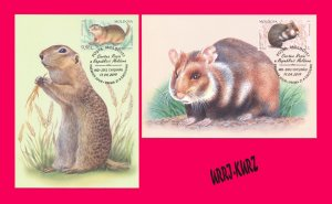 MOLDOVA 2019 Nature Fauna Animals Mammals Rodents Hamster Gopher Maxicards Cards