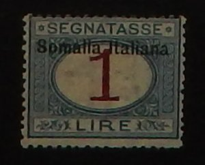 Somalia J19. 1909 1L Blue and magenta postage due