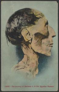 Egypt Rameses II Mummy Postcard Circa 1900