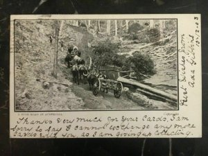 1903 South Wales Australia Picture Postcard Cover Bush Road To Chicago Il Usa