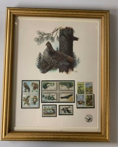 National Wildlife Federation 50th Commerative Stamps in Gold Frame