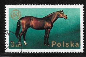 Poland Used [6126]