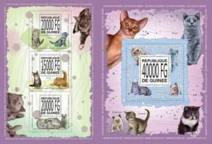 Guinea 2013 domestic animals pets cats klb+s/s MNH