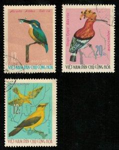 Birds, Vietnam, (2755-Т)