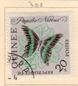 GUINEA 300 Butterfly