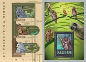 Guinea 2013 owls birds of prey klb+s/s MNH