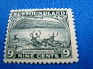 NEWFOUNDLAND  -  SCOTT # 138   MLH   (wwn15)