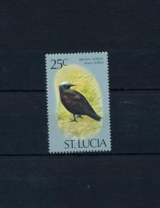 [52965] St. Lucia 1976 Birds Vögel Oiseaux Ucelli from set MNH