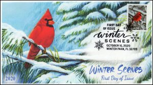 20-255, 2020, Winter Scenes, First Day Cover, Pictorial Postmark, Cardinal