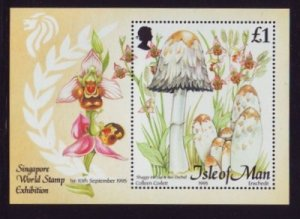 Isle of Man 1995 ,Mushrooms MNH S/Sheet # 655