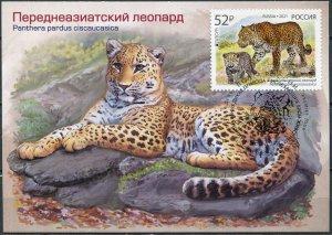 Russia. 2021. Persian leopard. Cancellation Krasnodar (Mint) Maximum Card