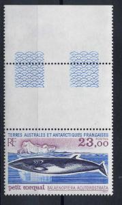 French Southern Antarctic Scott 208 MNH! Whale!