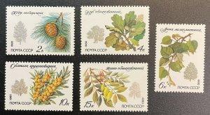 RUSSIA #4871-4875 MNH - Tree Pine, Oak, Lime, Ash (c1980) [RU108]