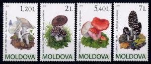 [68913] Moldova 2010 Mushrooms Pilze Champignons  MNH
