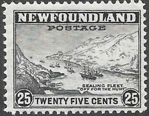 Newfoundland Scott Number 265 F H