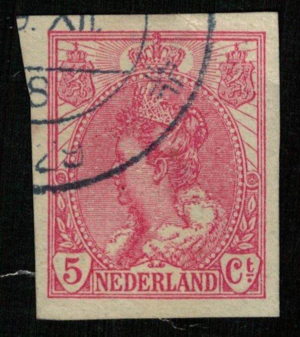 Queen Wilhelmina, 5 cents, Imperforated, 1923, Netherlands, MC #110 (T-7333)