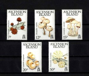 ASCENSION - 1983 - MUSHROOMS - FUNGI - PLANTS + 5 X MINT - MNH SET!