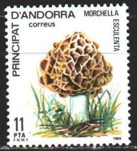 Andorra. 1984. 178. Mushrooms. MLH.
