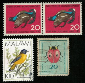 Birds, (3333-Т)