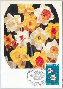 63376 -  FRENCH ANDORRA - POSTAL HISTORY: MAXIMUM CARD  -  FLOWERS   1974