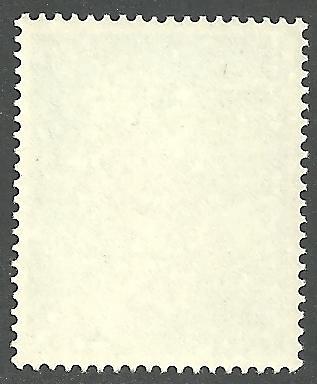 ABU DHABI SCOTT 14