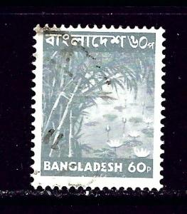 Bangladesh 100 Used 1976 issue