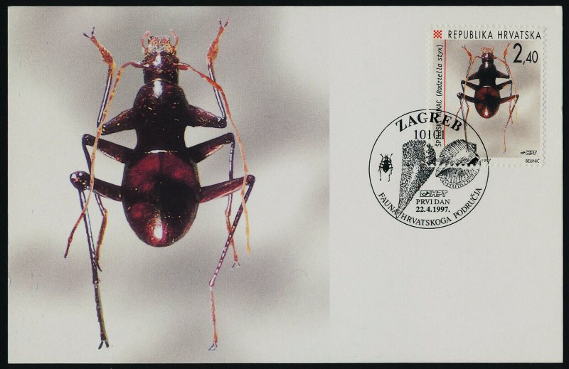 Croatia 328 on Maxi Card - Insect, Beetle