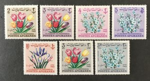 Afghanistan 1964 #671//h, MNH, CV $3.25