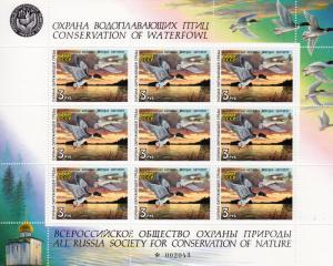 Russia 1990 Duck Hunting Stamps Miniature Sheet (9) MNH  RARE !!!