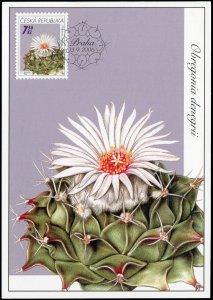 Czech Republic. 2006. Cacti. Obregonia denegrii (Mint) Maximum Card