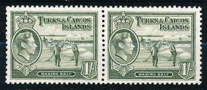Turks & Caicos Islands #86A Horiz Pair MNH