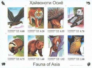 Tajikistan 2006 birds panda owls wild cats sheet MNH imperforated !