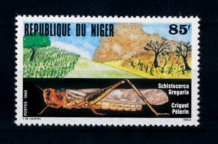 [70583] Niger 1989 Insects Grasshopper  MNH