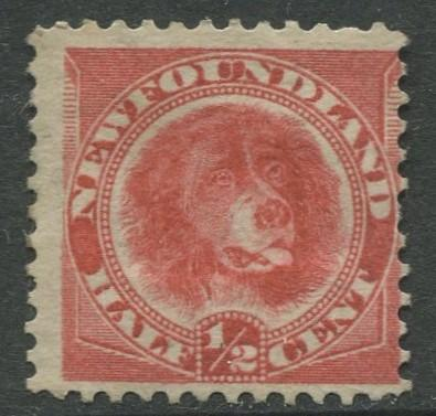 Newfoundland - Scott 56 - QV Definitive - 1887 - MNG - Single 1/2c Stamp