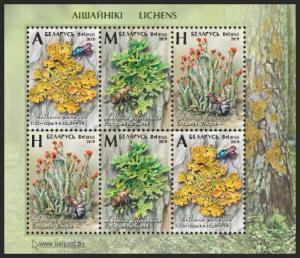 2019Belarus3vKLFlora. Lichens