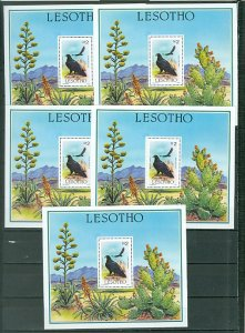 LESOTHO BIRDS #520...LOT of 5 SOUV. SHEETS...MNH...$50.00