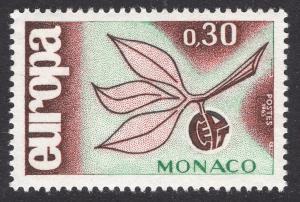 MONACO SCOTT 616