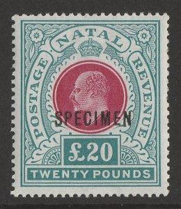 NATAL 1902 KEVII £20 wmk Crown CC SPECIMEN. normal cat £32,000.