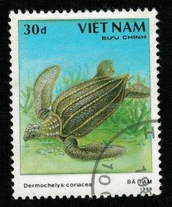 Turtle Vietnam 30d (TS-258)