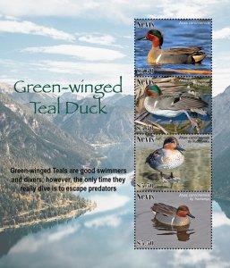 2021/05 - NEVIS - GREEN WINGED TEAL DUC             4V  complet set    MNH ** T