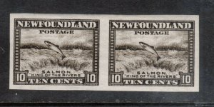 Newfoundland #193a Extra Fine Never Hinged Imperf Pair
