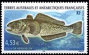 Scott #370 Fish MNH
