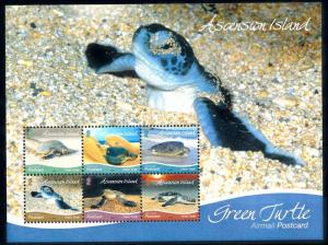 [66837] Ascension 2015 Marine Life Green Turtle Sheet MNH
