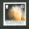 Alderney - 2006 Corals and Anemones (6p) (MNH)