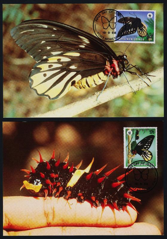 Papua New Guinea 697-700 on Maxi Cards - Butterflies, Insects, Flower