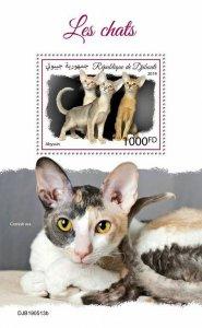 Z08 IMPERF DJB190513b DJIBOUTI 2019 Cats MNH ** Postfrisch